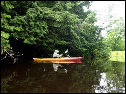 Kayaking the Exeter River 025