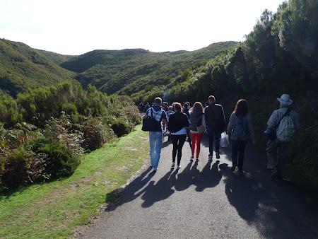 Ce e de facut prin Madeira