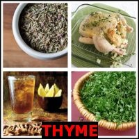 THYME- Whats The Word Answers