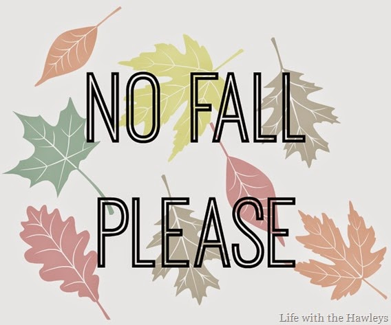 No Fall Please