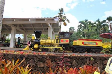 Oahu, Hawaii: Dole Plantation Hawaii