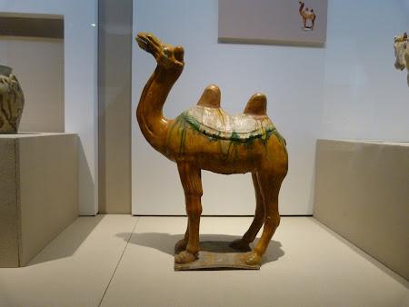 Muzeu Zhenjiang: Ceramica chinezeasca