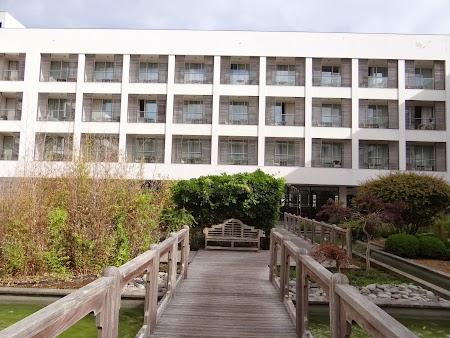 08. Royal Garden Ponta Delgada.JPG