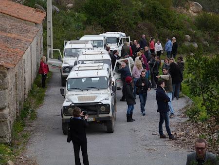 Jeep safari Algarve: oprire in safari
