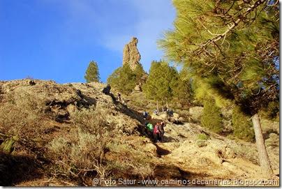 7491 La Goleta-Tejeda(Roque de El Fraile)