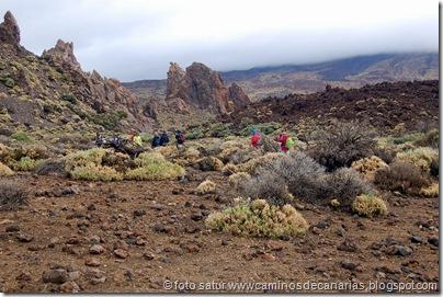 039 Cañadas del Teide