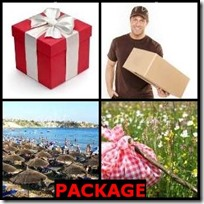PACKAGE- 4 Pics 1 Word Answers 3 Letters