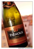 painous_cava_brut_nature