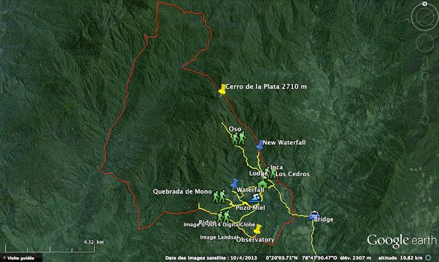 Reserva Los Cedros : sentiers