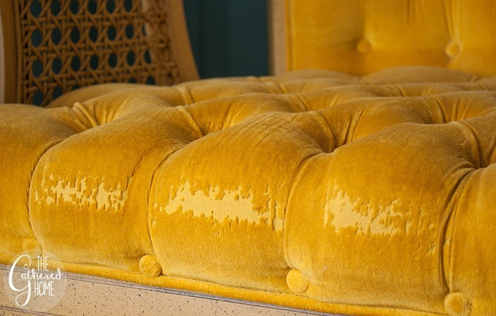 thriftscorethursday tufted yellow velvet caned chairs5