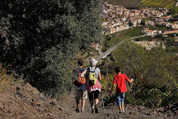 Camí vell del Mas d'en Cubells,DOQ Priorat,Porrera, Priorat, Tarragona