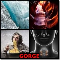 GORGE- 4 Pics 1 Word Answers 3 Letters