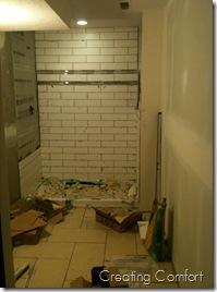 Basement Bathroom Reno
