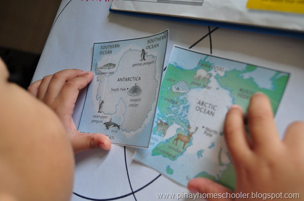Checking out the maps of the Arctic and Antarctic Regions