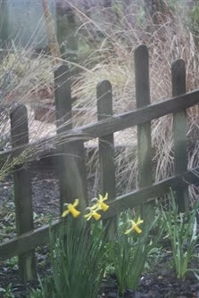 20090326 (Small)