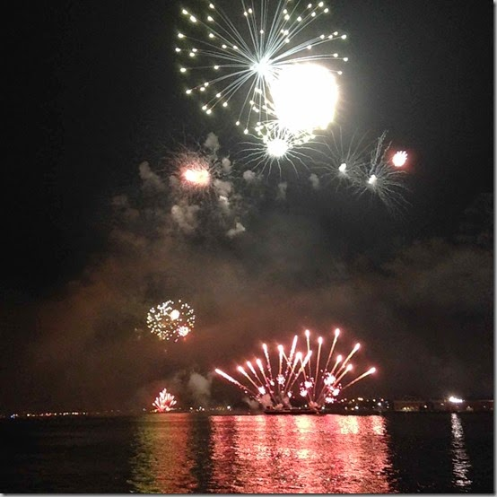 fireworks  (33)