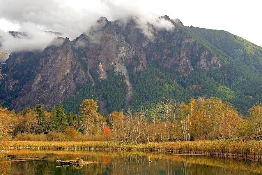 Mount Si, North Bend, Washington by Dan Dusek - Landscapes Mountains & Hills ( mountain, colors, trees, autumn colors, landscape,  )