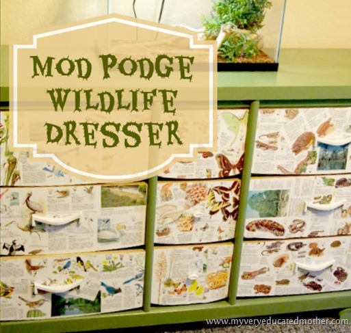 Mod Podge Wildlife Dresser #modpodge #dresser #crafting