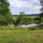 La Loire à Balbigny photo #404