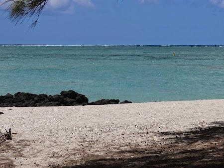 06. Ils aux Cerfs Mauritius.JPG