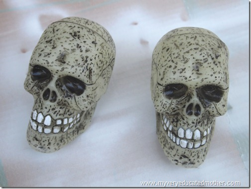 @mvemother Day of the Dead Skulls