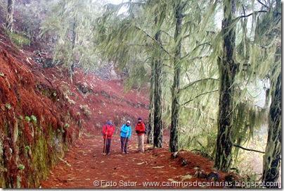 6820 Barranco Andén-Cueva Corcho(Barranco Andén)
