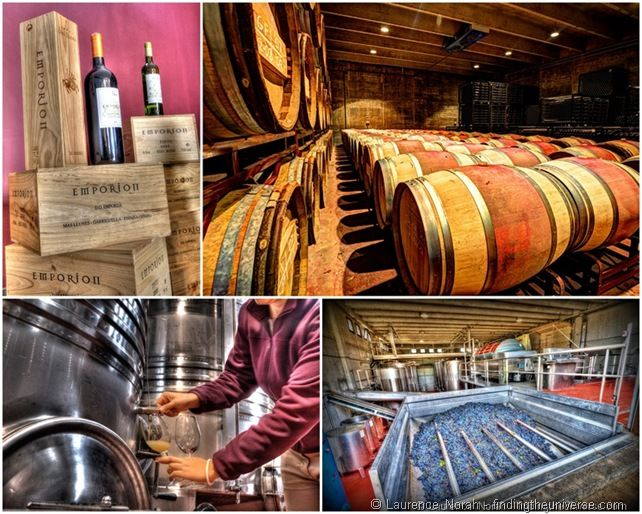 Wine creation collage barrels vat ferment[1]
