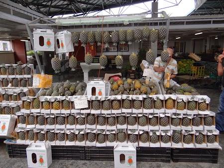 19. Ananas de Azore.JPG