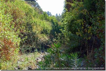 6417 Santa Brígida-Hoya Chiquita