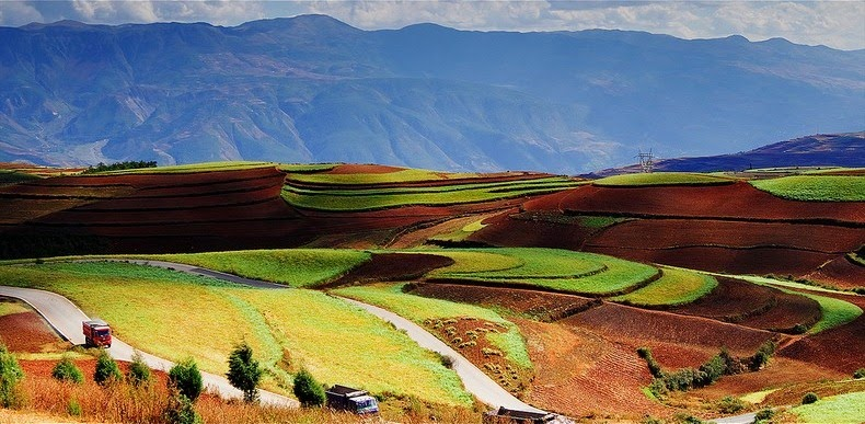 dongchuan-red-soil-4