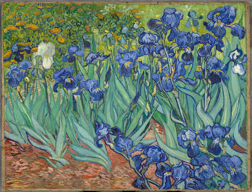 "irises-Van-Gogh-Getty-Los-Angeles - ""Irises"" (1889), the oil painting by Vincent van Gogh, can be seen at the Getty Museum in Los Angeles."