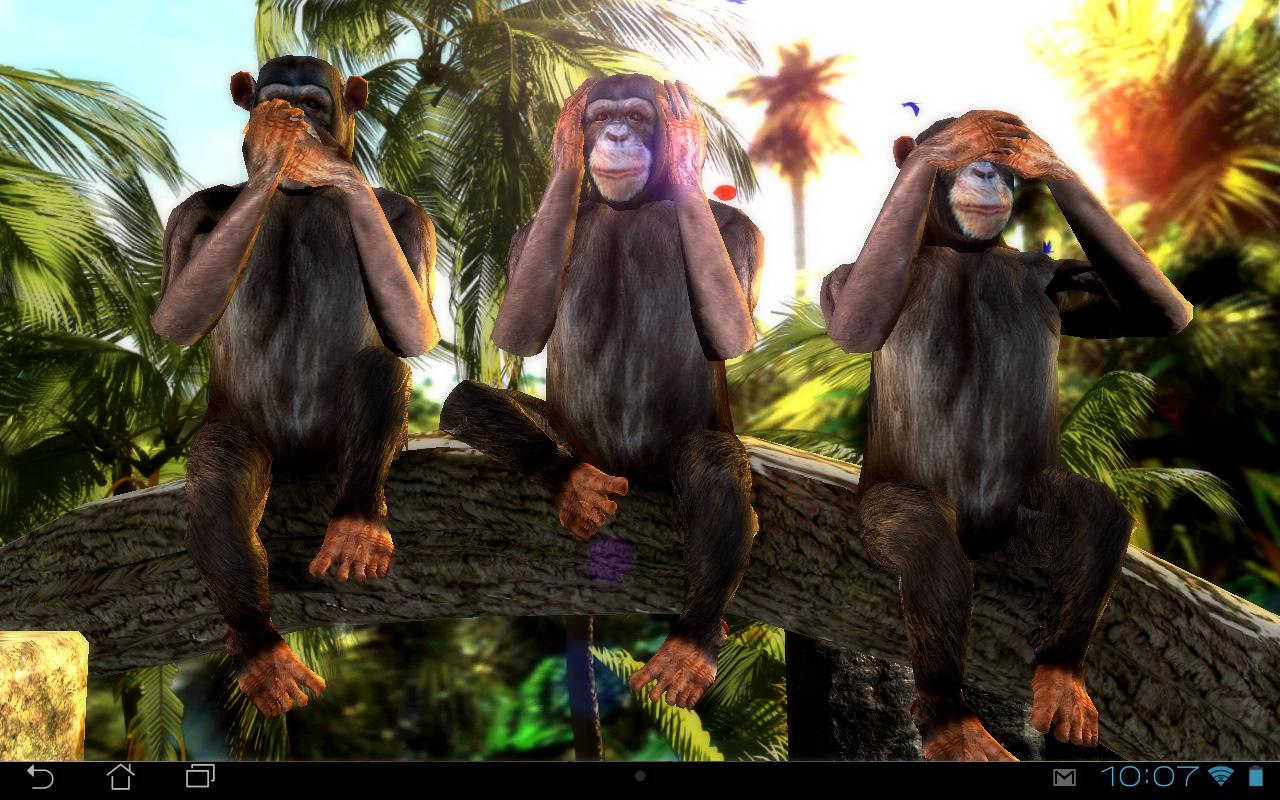 three wise monkeys 3d - android apps on google play