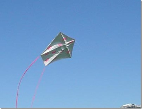 a-form-three-stick-kite-made-with-tyvek-covering-21522179