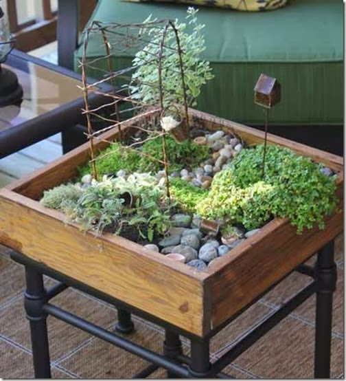 Small Space Landscaping Ideas: DTL Herbs LTD: Small Space Gardening Ideas