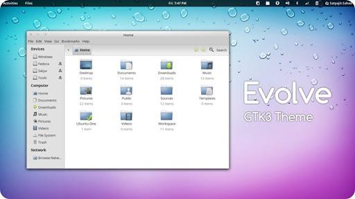 temi ubuntu 12.10