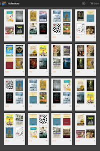 Amazon Kindle v4.3.0.110