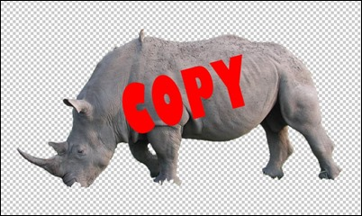 Rhino-cut
