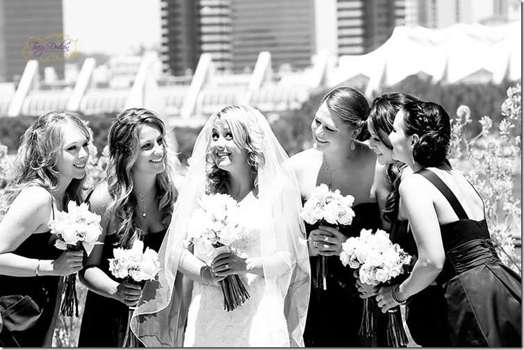 D&L Bridesmaids 2   109j bw