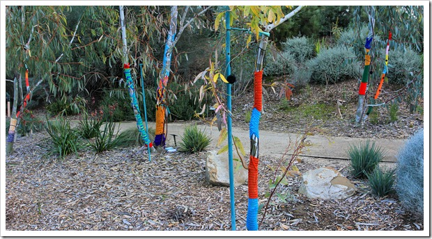 130119_UCDA_AustralianCollection_YarnBombing_pano