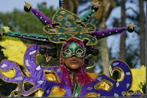 carnaval de guyane 2011