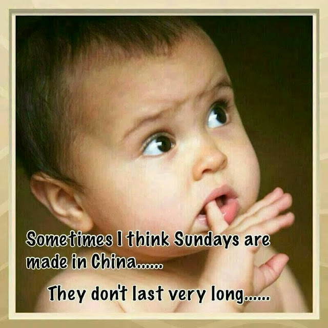 Sunday is made in China #funnyquote #vikrmn CA Vikram Verma author 10 Alone Chartered Accountant