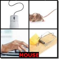 MOUSE- 4 Pics 1 Word Answers 3 Letters