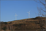 Windräder über Odenbach