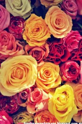Recursos Para Redes Sociales Fondos De Flores Para Whatsapp
