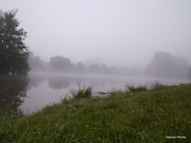 Etang de la tuilerie photo #1052