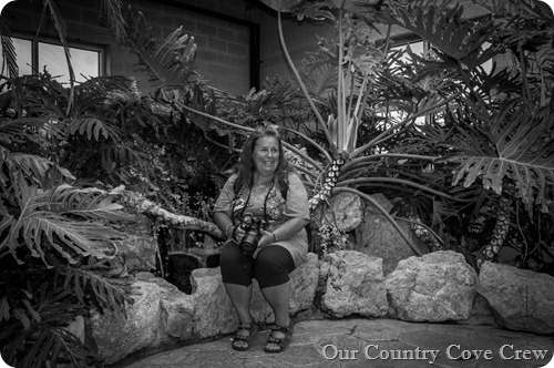 butterfly conservatory (1 of 1)-2