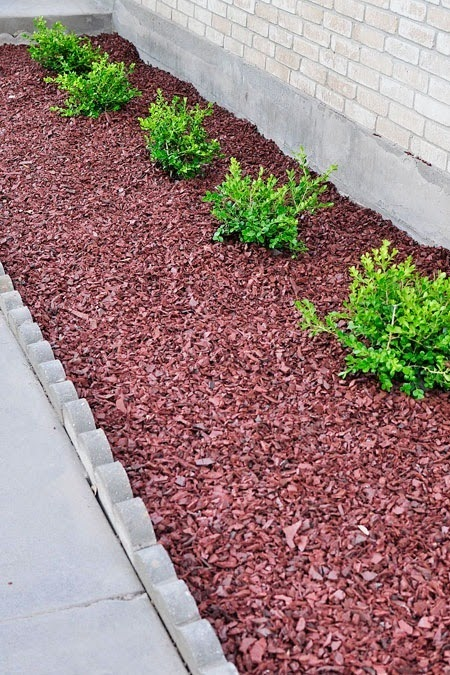 An outdoor curb appeal tutorial for adding boxwoods using landscape fabric.