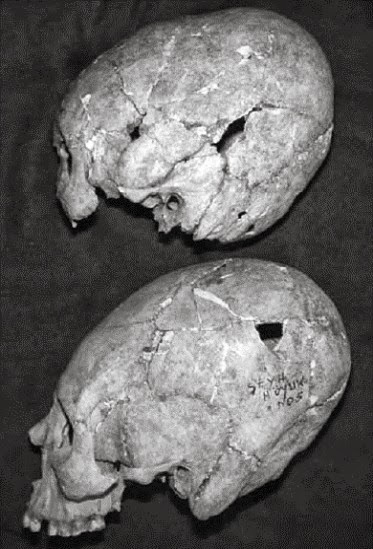 Seyh Höyük crania