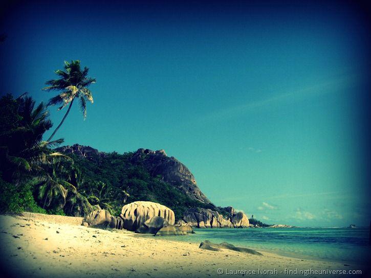 palm tree beach seychelles