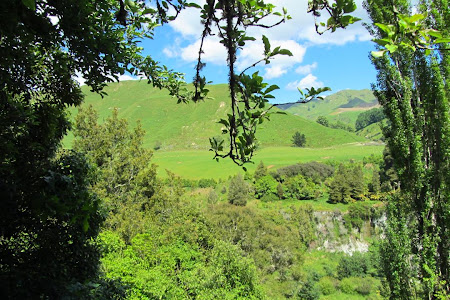 Imagini Insula de Nord: Rotorua